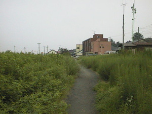 20070819img0063