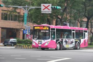 Taipeibus245